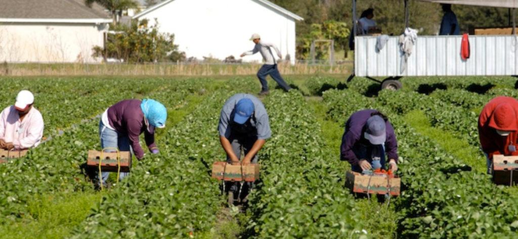 Sfruttamento lavoratori migranti